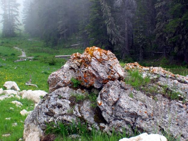 Lichen Rocks Clouds